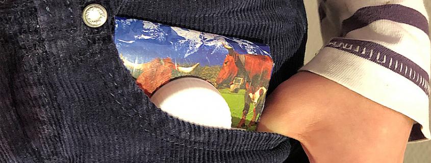 DIY: Ein Portemonnaie aus Milchkarton basteln